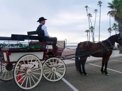 Oceanside Valentines Week - Horse and Carriage Rides