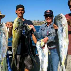 Sea Star Charters Sportfishing Oceanside Ca_web