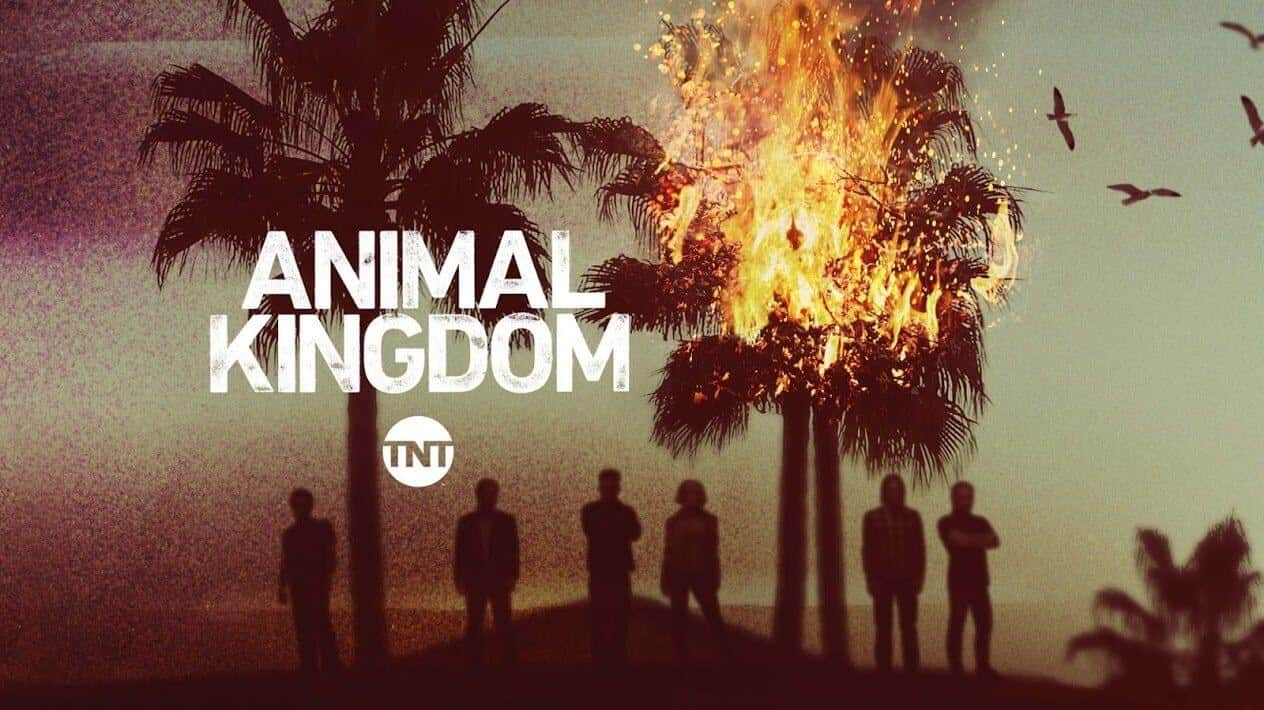 Animal Kingdom on TNT