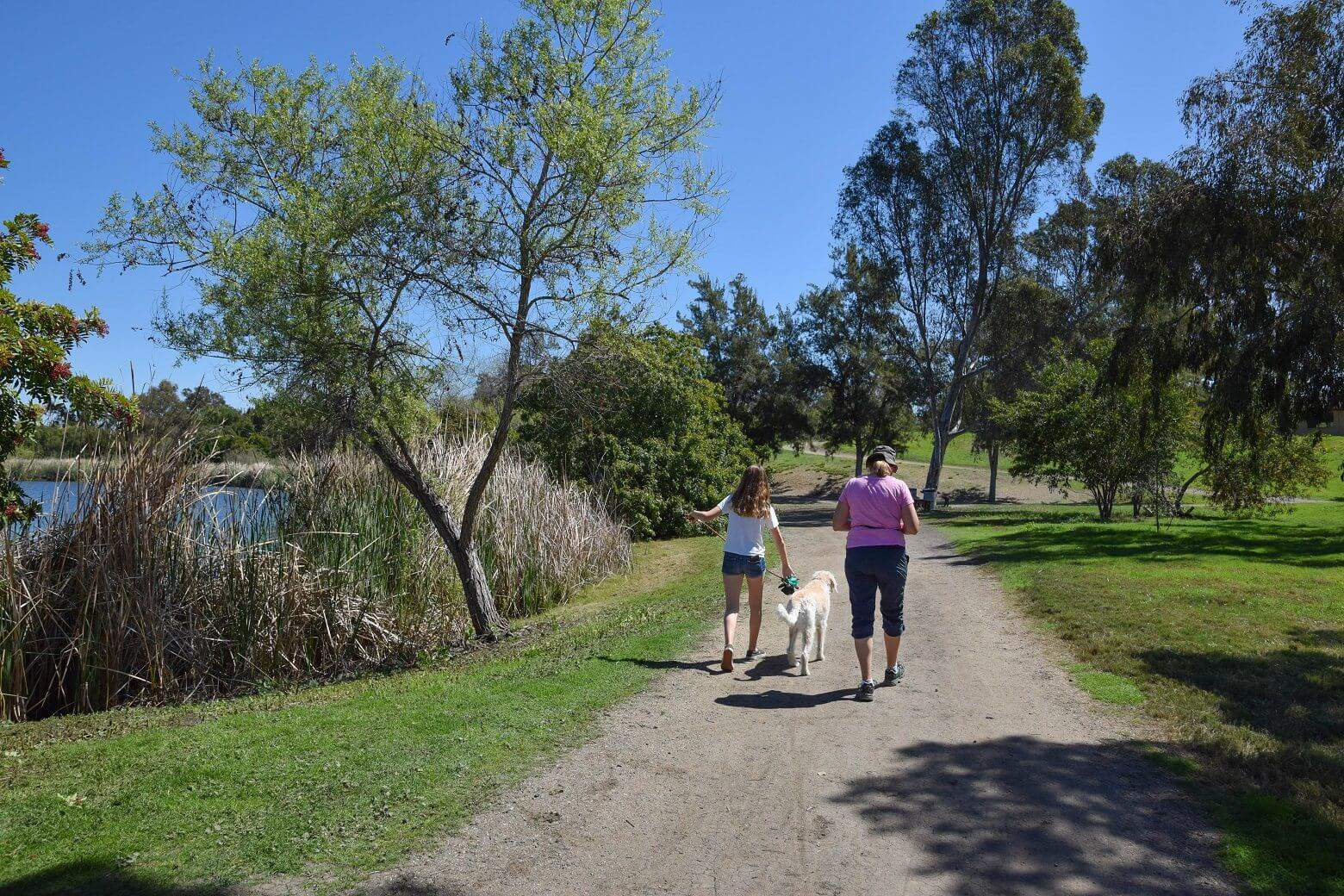 Walking the Dog at Guajome Park