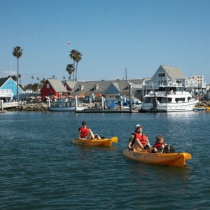 Oceanside Harbor Kayak